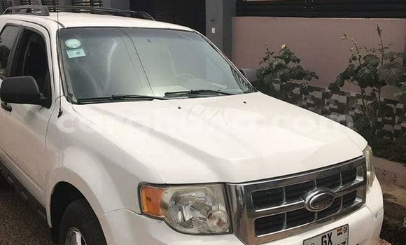 Buy Used Ford Escape White Car in Accra in Greater Accra