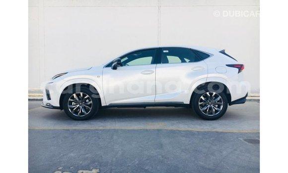 Buy Import Lexus NX Other Car in Import - Dubai in Ashanti