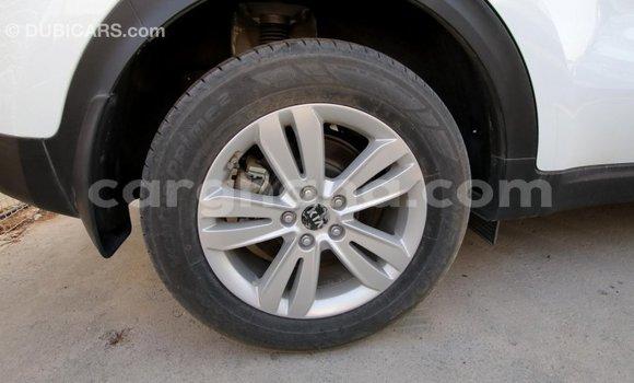 Buy Import Kia Sportage White Car in Import - Dubai in Ashanti