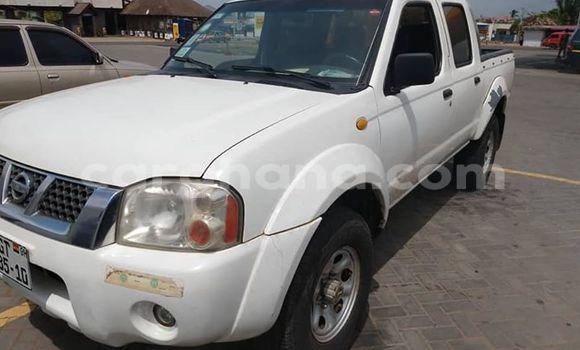 Buy Used Nissan Hardbody White Car in Tema in Greater Accra